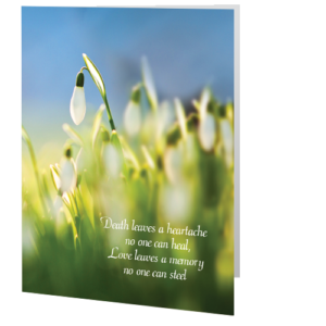 little-angel-memorial-card-snowdrop