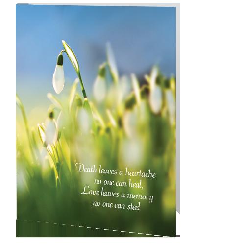 little-angel-memorial-card-snowdrop