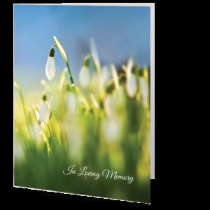 memorial-card-snowdrop