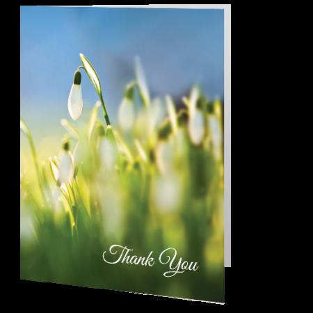 thank-you-card-snowdrop