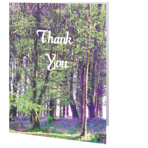 thank-you-card-bluebells-union-wood