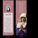 bookmark-madonna