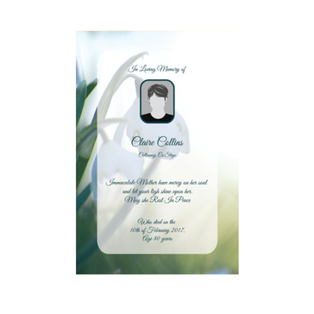 wallet-card-snowdrops-in-the-shade